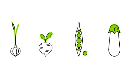 Fresh vegetables line icons set, garlic, green peas, beetroot, eggplant, organic healthy food vector Illustration isolated on a white background.