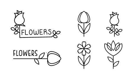 Flowers linear set, floral design elements can be used for branding identity, flower shop, florist salon vector Illustration on a white background Illustration