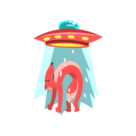 Alien UFO spaceship taking away red fox, flying saucer taking animal using light beam vector Illustration isolated on a white background.