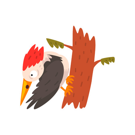 Cute woodpecker sitting on a tree and looking down, funny bird cartoon character vector Illustration isolated on a white background.