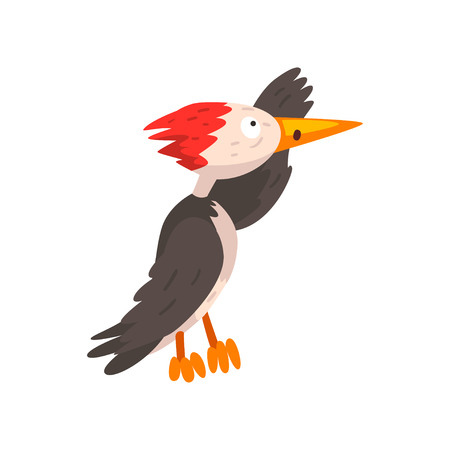 Cute woodpecker looking into the distance, funny bird cartoon character vector Illustration isolated on a white background. Illustration