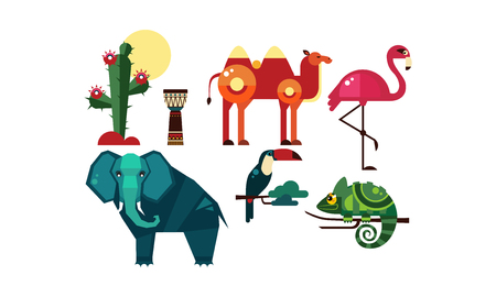 Wild African animals set, cactus, elements of nature and culture of Africa, camel, tribal drum, flamingo, toucan, chameleon vector Illustration isolated on a white background.