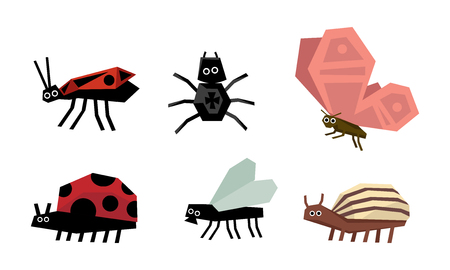 Geometric insects set, spider, bug, ladybug, colorado potato beetle, fly, butterfly vector Illustration