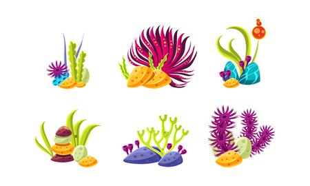 Composiciones de dibujos animados con algas y piedras de fantasía. Plantas marinas. Tema de la vida marina y oceánica. Objetos para decoración de acuarios. Ilustraciones coloridas aisladas sobre fondo blanco. Conjunto de vector plano.
