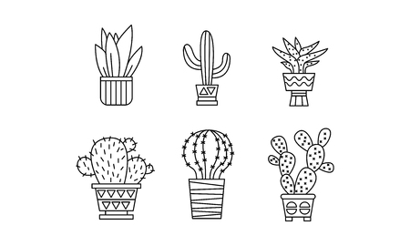 Collection of cactuses and succulents, houseplants in pots, linear botanical design elements vector Illustration isolated on a white background. Çizim