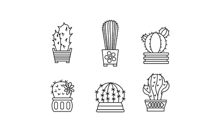 Collection of cactuses, succulent in pots, linear botanical design elements vector Illustration isolated on a white background.
