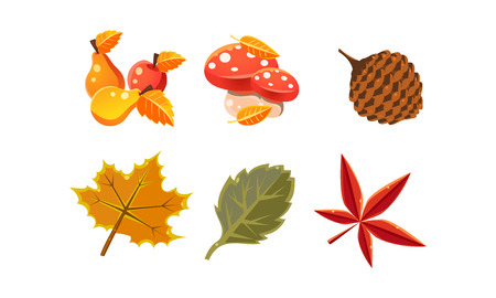 Collection of bright colorful autumn leaves and plants, autumn nature design elements vector Illustration isolated on a white background. Ilustração
