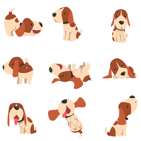 Cute beagle dog in various poses set, funny animal cartoon character vector Illustration isolated on a white background. Illustration