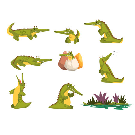 Friendly crocodile in different poses set, funny predator cartoon character, roc daily activities vector Illustration isolated on a white background.