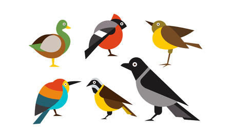 Birds set, duck, bullfinch, sparrow, tit, crow, titmouse vector Illustration isolated on a white background