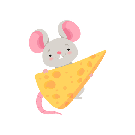 Cute mouse with cheese, funny animal cartoon character vector Illustration isolated on a white background. Illustration