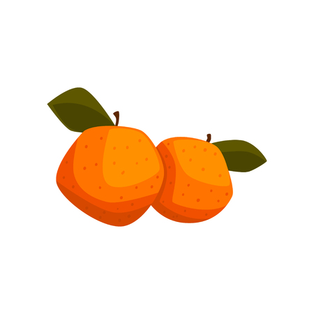 Fresh tangerine fruits with green leaves vector Illustration isolated on a white background.