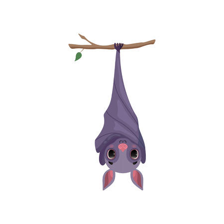 Cute bat hanging upside down on tree branch, funny creature cartoon character vector Illustration isolated on a white background.