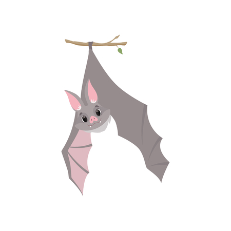 Funny bat hanging upside down on a branch wrapped, gray creature monster cartoon character vector Illustration isolated on a white background.