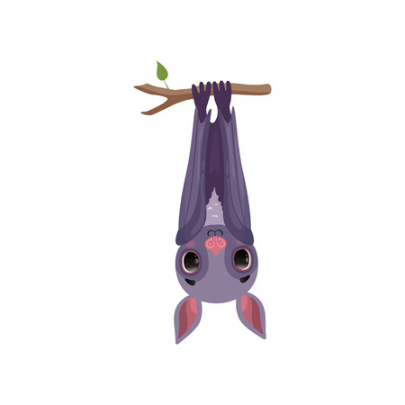 Funny bat hanging upside down on tree branch, cute creature cartoon character vector Illustration isolated on a white background.
