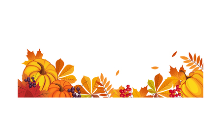 Thanksgiving banner with space for text, chokeberry, rowan, maple leaves and pumpkins vector Illustration on a white background. Ilustracja