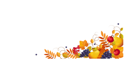 Thanksgiving banner with space for text, bright autumn fruits and leaves vector Illustration on a white background.