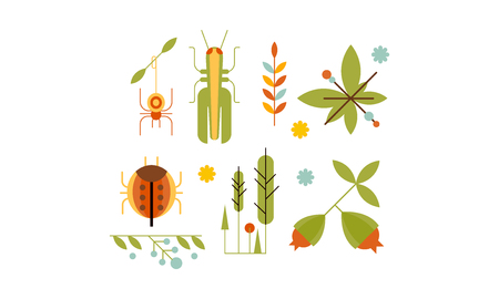 Collection of insects and plants, nature and ecology design elements vector Illustration Illusztráció