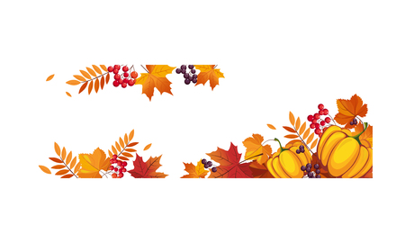 Thanksgiving banner with pumpkins and colorful chokeberry, rowan, maple leaves, border frame with space for text vector Illustration on a white background.