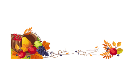 Thanksgiving banner with cornucopia and space for text, autumn fruits and leaves vector Illustration on a white background.