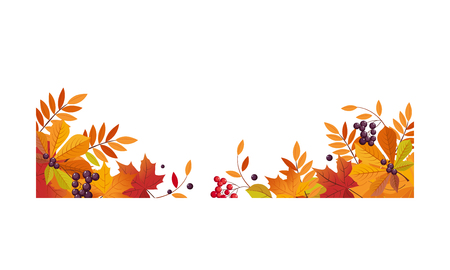 Autumn background with space for text, banner with bright autumn chokeberry, rowan, maple leaves and berries vector Illustration template. Ilustracja
