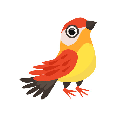 Colorful beautiful finch bird vector Illustration isolated on a white background.