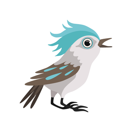 Beautiful blue jay bird vector Illustration isolated on a white background.