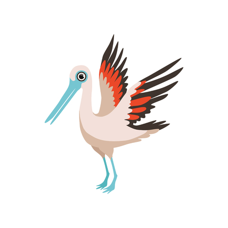Beautiful stork bird vector Illustration isolated on a white background.