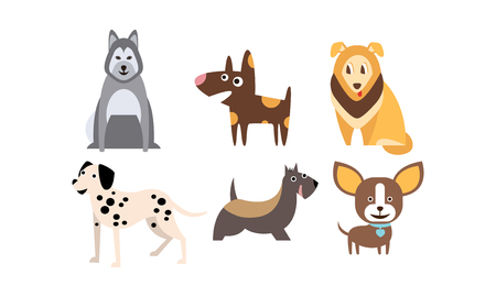 Dogs of different breeds set, cute pets, domestic animals, best friends vector Illustration