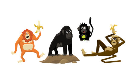 Funny monkeys of various breeds, animal characters eating fruits vector Illustration