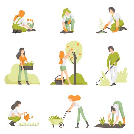 Les gens qui s'occupent des plantes dans le jardin, les hommes et les femmes qui cultivent des produits agricoles vector Illustration isolée sur fond blanc.
