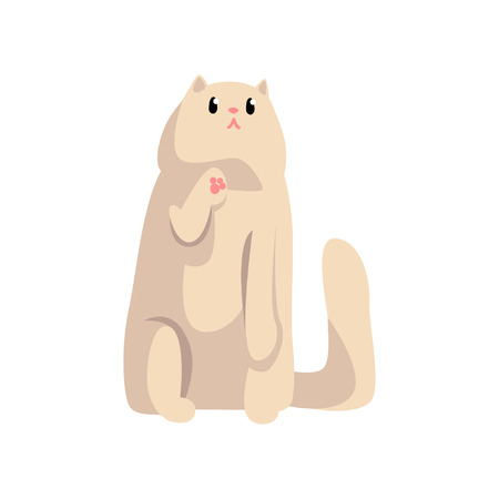 Cute white fluffy cat, funny pet character, furry human friend vector Illustration isolated on a white background.