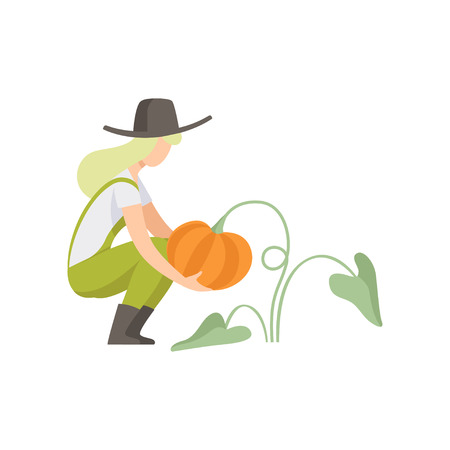 Girl picking pumpkin, farmer harvesting, woman working in the garden vector Illustration isolated on a white background.