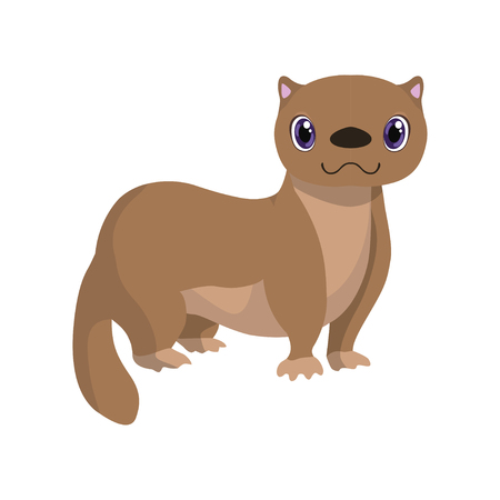 Cute fitch, lovely animal cartoon character vector Illustration isolated on a white background.