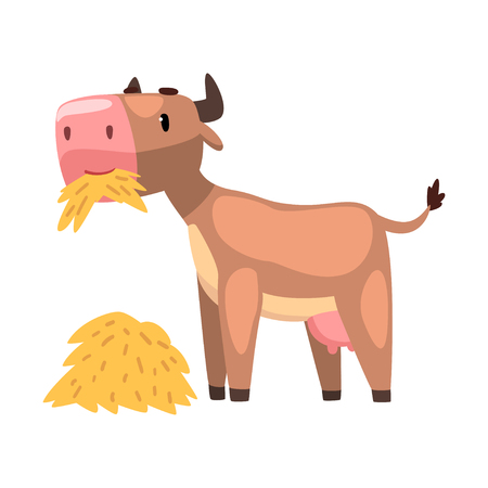 Funny brown cow eating hay, farm animal cartoon character vector Illustration isolated on a white background.