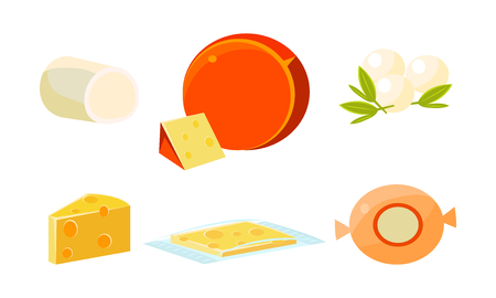 Delicious fresh cheese assortment, various types fresh cheesy products vector Illustration isolated on a white background.