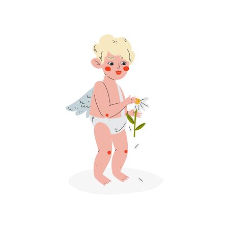 Cute Funny Cupid Guessing at Camomile, Amur Baby Angel, Happy Valentine Day Symbol Vector Illustration Isolated on White Background. Illustration