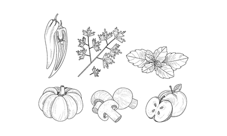 Set of vegetables, fruits and herbs in sketch style. Organic products. Natural food. Cooking theme. Graphic elements for recipe book. Hand drawn vector illustrations isolated on white background.