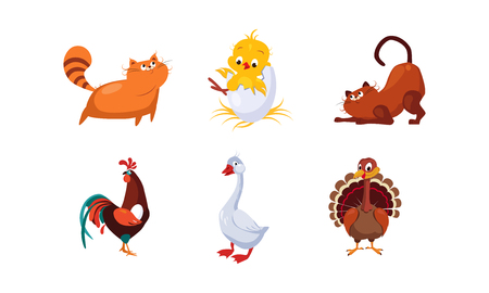 Cute cartoon farm animals and pets set, cats, cock, chicken, turkey, goose vector Illustration isolated on a white background.