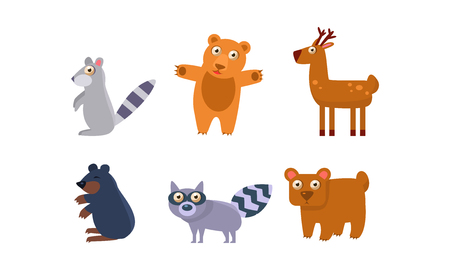 Collection of wild forest animals, raccoon, bear, deer, mole vector Illustration isolated on a white background.