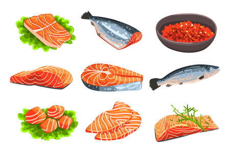 Fresh salmon fish set, fillet, steak and caviar, seafood product vector Illustrations isolated on a white background.