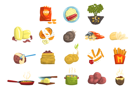 Dishes of potatoes set, raw and cooked potatoes vector Illustrations on a white background  イラスト・ベクター素材