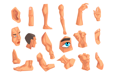 Male body parts set of vector Illustrations isolated on a white background.