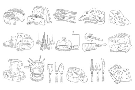 Hand drawn set of different types of cheese. Organic and fresh dairy products. Realistic sketch style icons. Monochrome vector design for decoration
