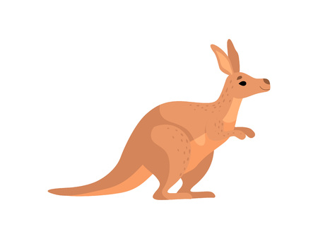 Brown Kangaroo, Cute Wallaby Australian Animal Character, Side View Vector Illustration