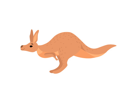 Cute Brown Kangaroo, Wallaby Australian Animal Character, Side View Vector Illustration
