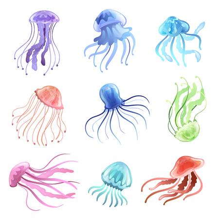 Jellyfish Set, Beautiful Colorful Swimming Marine Underwater Creatures Vector Illustration on White Background.