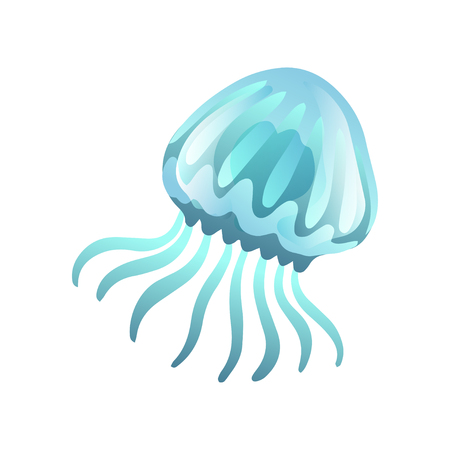 Jellyfish, Beautiful Swimming Marine Underwater Creature, Glowing Transparent Medusa Vector Illustration on White Background.