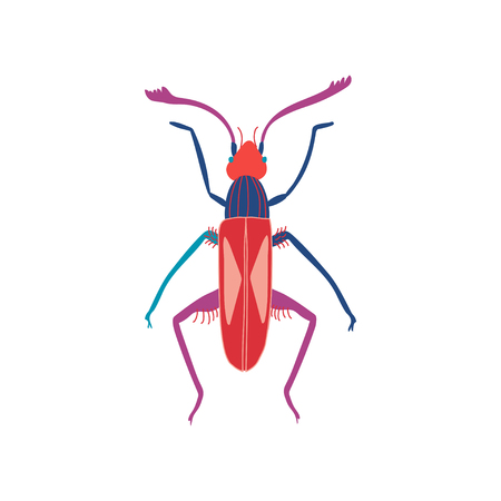 Cute Colorful Beetle Insect, Top View Vector Illustration Ilustrace