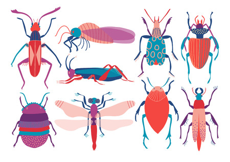 Colorful Insects Set, Cute Butterfly, Beetle, Bug, Dragonfly, Top View Vector Illustration